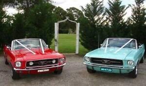 Mustang Convertibles Car Hire - Weddings, Formals, Special Events