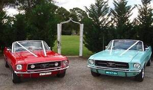 Topless Classics Car Hire - Weddings, Formals, Special Occasions Blacktown Blacktown Area Preview