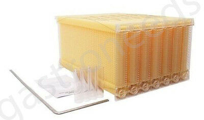 7 Waben Automatische Honigproduktion Bienenhaus Bienenstock Imkerei ca Flow Hive