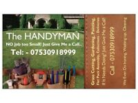 Handyman Services/Painting & Decorating etc