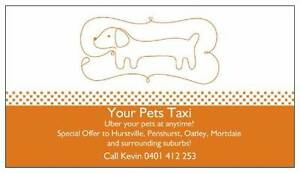 Your Pets Taxi - Return trip from $30! Hurstville Hurstville Area Preview