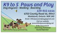 K9 to 5 Paws & Play Dog Daycare & Boarding