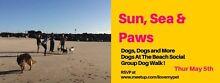 Sun, Sea & Paws - Social Group Dog Walk [FREE] Main Beach Gold Coast City Preview