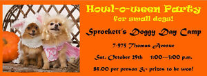 Howl-O-Ween Party for Small Dogs!