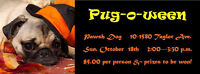 PugOween & Friends Party -  October 18th Pugs, Boston Terriers
