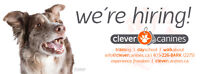 WANT TO WORK WITH DOGS?