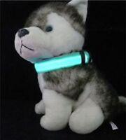 Collier de chien avec lumière LED