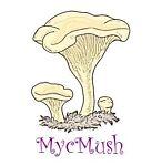 MycMush