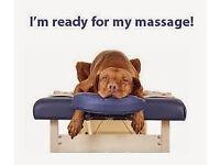Angelica massage [new therapist in leeds]