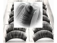 Fake Eyelashes 10 pairs