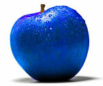 BlueApples LLC
