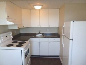 Pet Friendly Bachelor suites starting at $685
