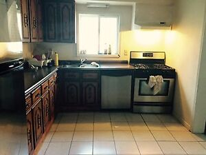 2 Rooms available near McMaster for rent in all girls house $425