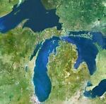 Michigan Ginger Resale
