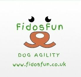 Fun Dog Agility - Fidosfun offers training to handlers new to Dog Agility and wanting to improve