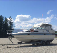 26 1/2' boat and trailer - ready to go!