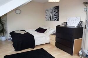 FULLY FURNISHED BEDROOMS IN BRAND NEW DOWNTOWN HOUSE