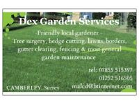 GARDEN MAINTENANCE - Camberley & 20 mile radius - Tree Surgeon, Hedge cut, Lawn, Borders, Fencing