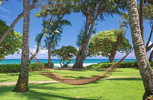 Week in Hawaii $500 for all 7 nights due to short notice.