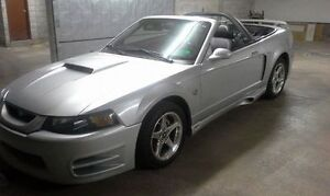 2004 Ford Mustang 40th anniversary GT Convertible