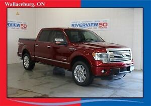 2013 Ford F-150 Platinum EcoBoost - Navigation and Power Running