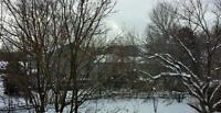 5 Bed Blue Mountain Loft Chalet wth Hot Tub New Years