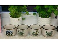 Botanical design mugs