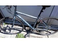 Falcon mens mountain bike