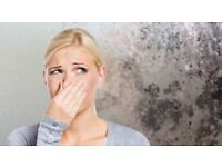 Condensation or Black Mould Problems? Talk to us first.