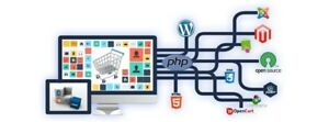 Comox Valley Area Affordable Wordpress Development