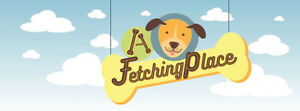 A Fetching Place - Doggy daycare, boarding and grooming