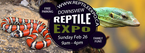 Reptile Expo THIS SUNDAY!