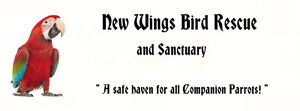 New Wings Bird Rescue and Sanctuary