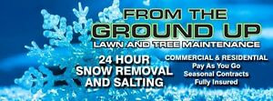 AMHERSTBURG AND AREA SNOW REMOVAL Windsor Region Ontario image 1