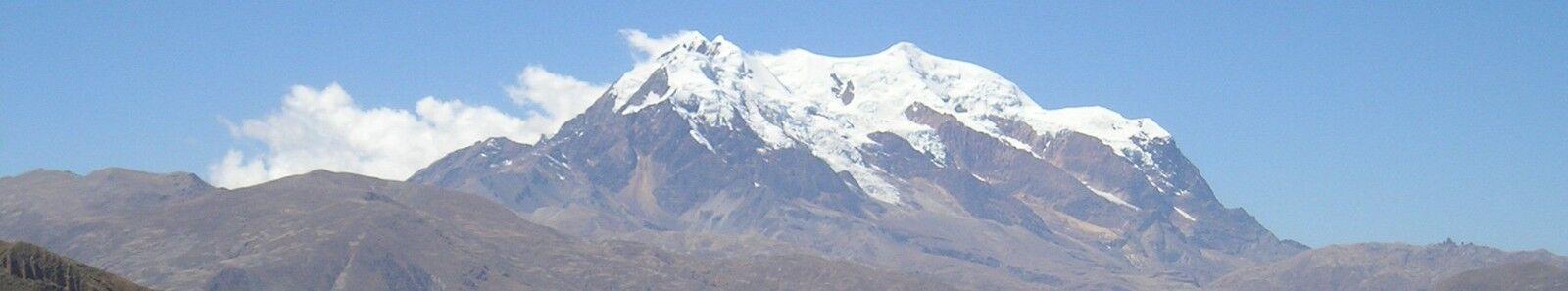BOLIVIAN FOSSILS