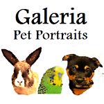 Galeria Pet Portraits