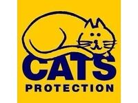 Volunteers required at Cats Protection Charity Shop Edinburgh