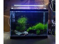 Fish tank 60 liters