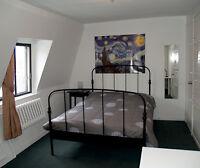 Unique Great Room for rent 5 min metro Berri UQAM all inclusive