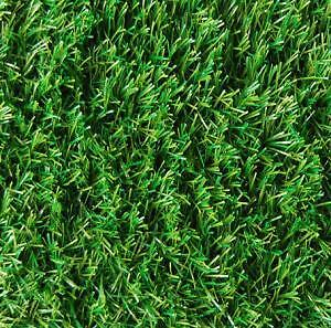 Artificial Grass/Turf Used or New