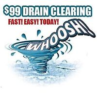 call the pros Quality Rooter 99$flat rate fees services