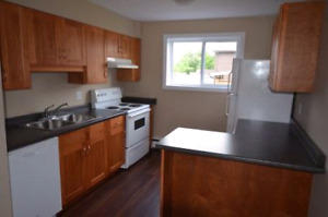 Renoed Inclusive  2 BED  apt - Avail June - 30 Cunningham