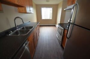Reno Large 3-bed with balcony Avail  Now or Jan.