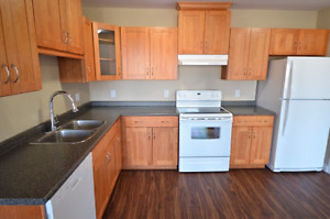 Renoed All-in 2 BED Patio Avail Oct 1st 245 Niagara