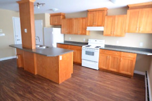 Renoed Large 1-bedroom - Avail May 1- 245 Niagara