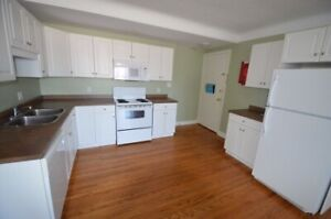 1-Bed plus Den downtown - Avail May 1- 223 Ontario