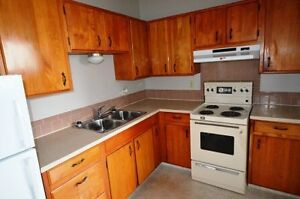 Large 1-bedroom apartment - Avail Oct or Nov- 154th Street