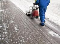 residential Plowing, Salting & Removal call now