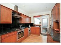 Kitchen cabinets with integrated appliances