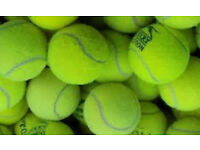 30 top quality, used tennis balls £10, ideal for dogs, cats etc